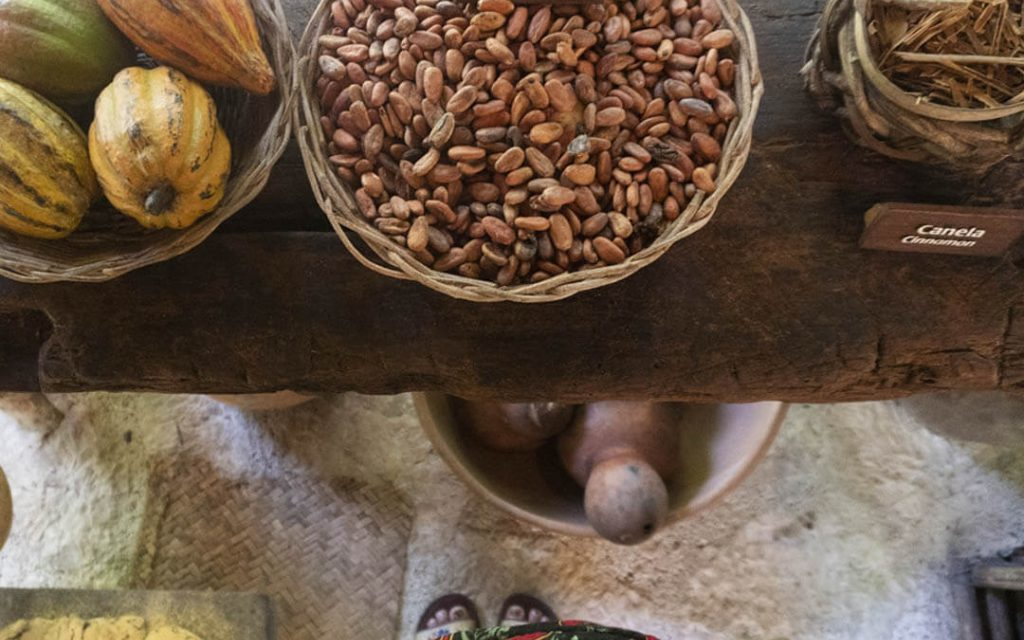 Chocolate Workshop in Xcaret: a delight for the senses