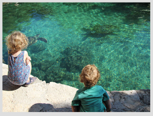 Xcaret-and-Xel-ha-with-a-Toddler-2