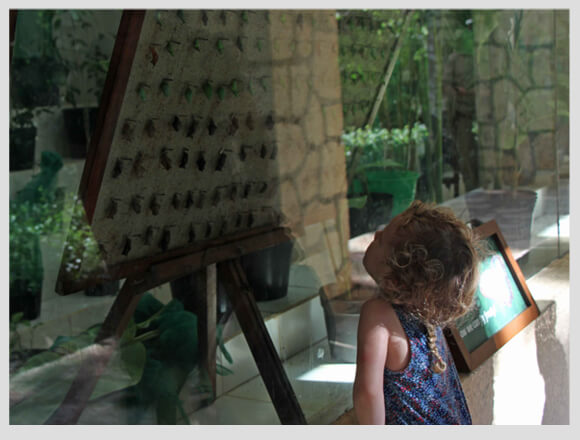 Xcaret-and-Xel-ha-with-a-Toddler-8
