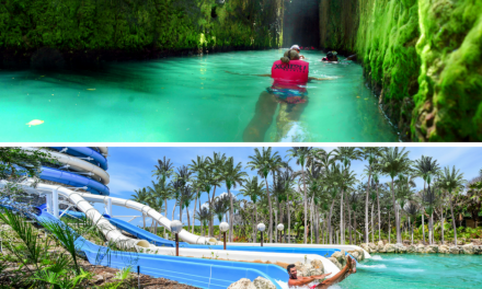 Xcaret or Xel-Há? Discover Which One to Visit