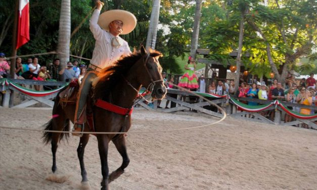 Everything you need to know about the horses at Xcaret