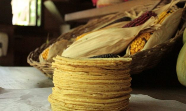 Learn how to prepare traditional Mexican tortillas in Xcaret