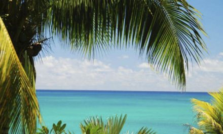 5 flavors that will take you to Riviera Maya