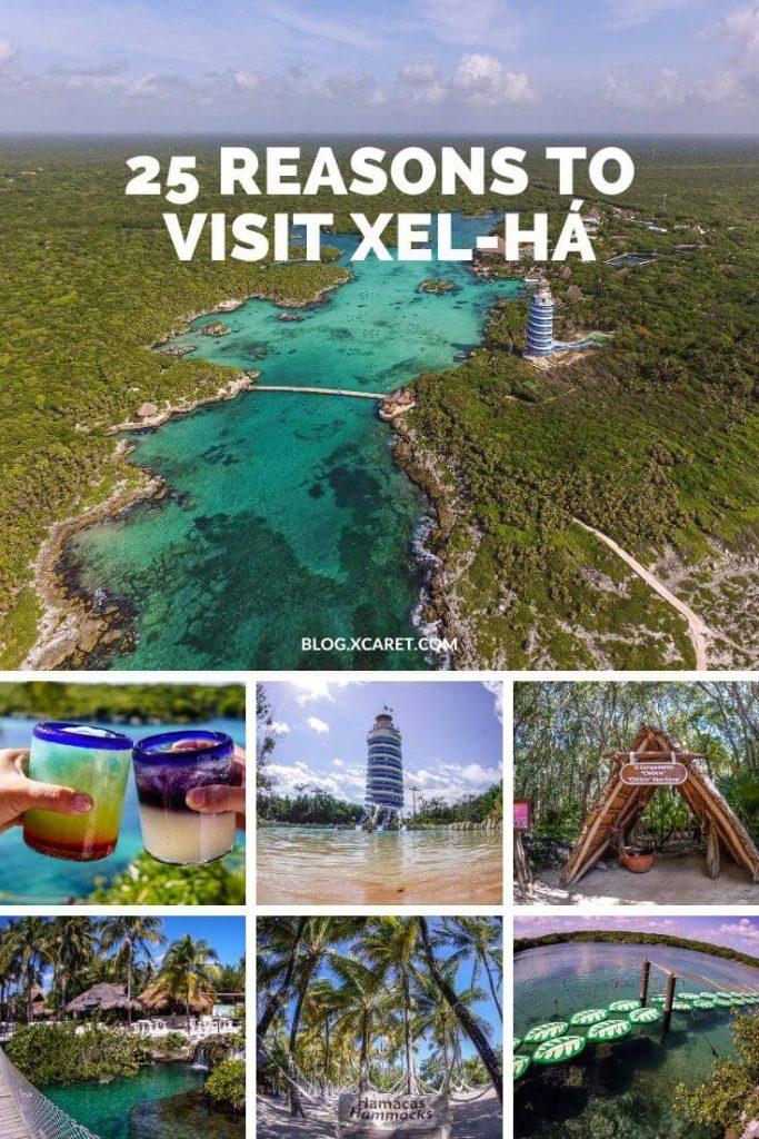We wait for you here to celebrate the 25 years of Xel-Há!