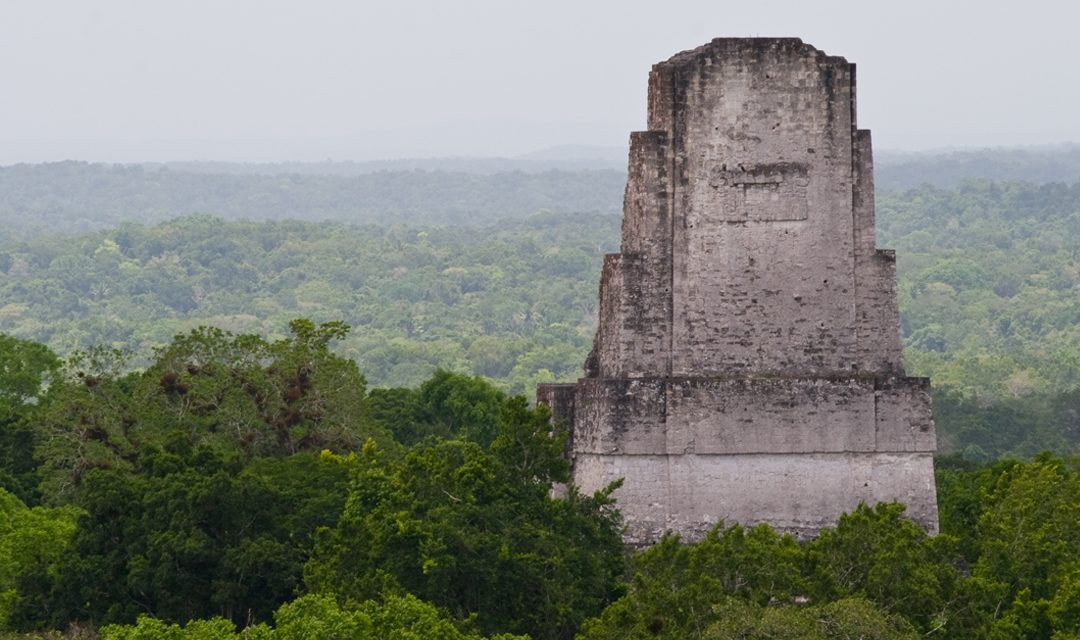 Amazing new findings of the Mayan Culture