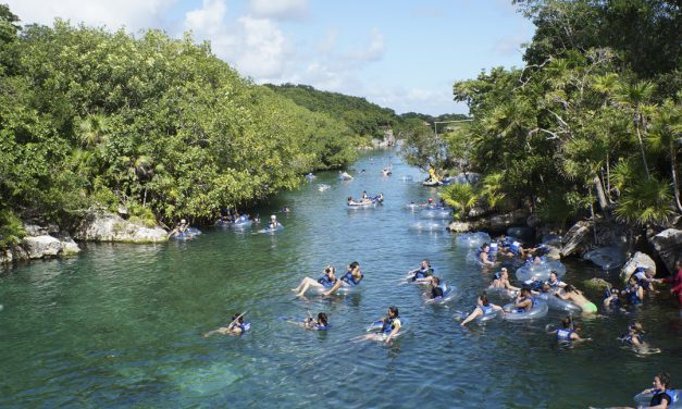 8 Water Landscapes You Can See in Quintana Roo