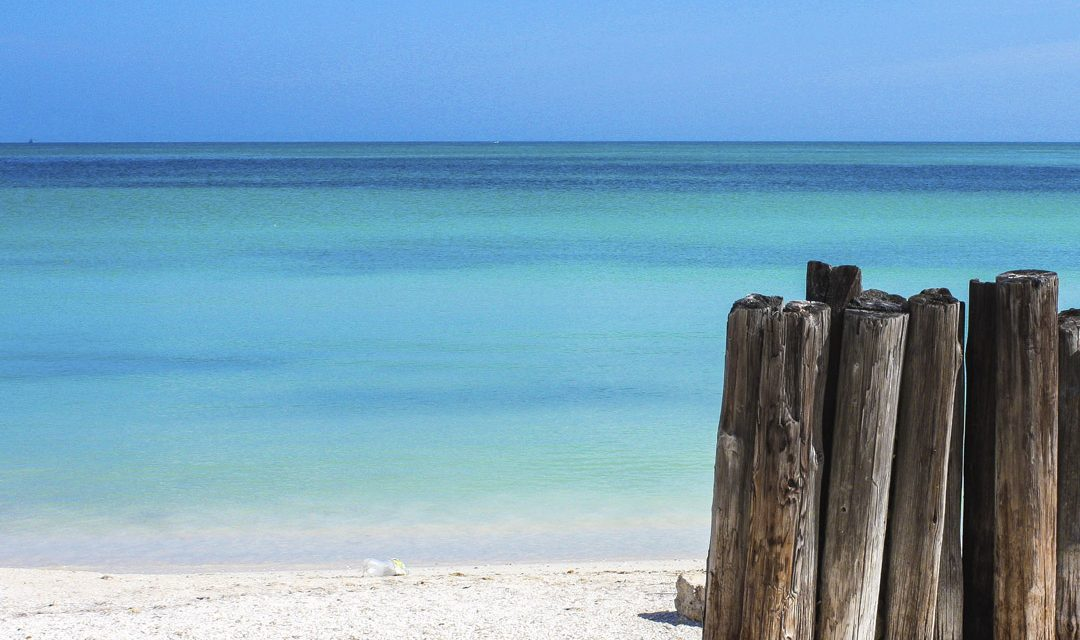 5 incredible beaches in Yucatan you may not know