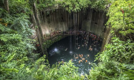 The Cenotes Of The Mayan World