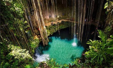 The best 10 cenotes for cliff jumping in Mexico