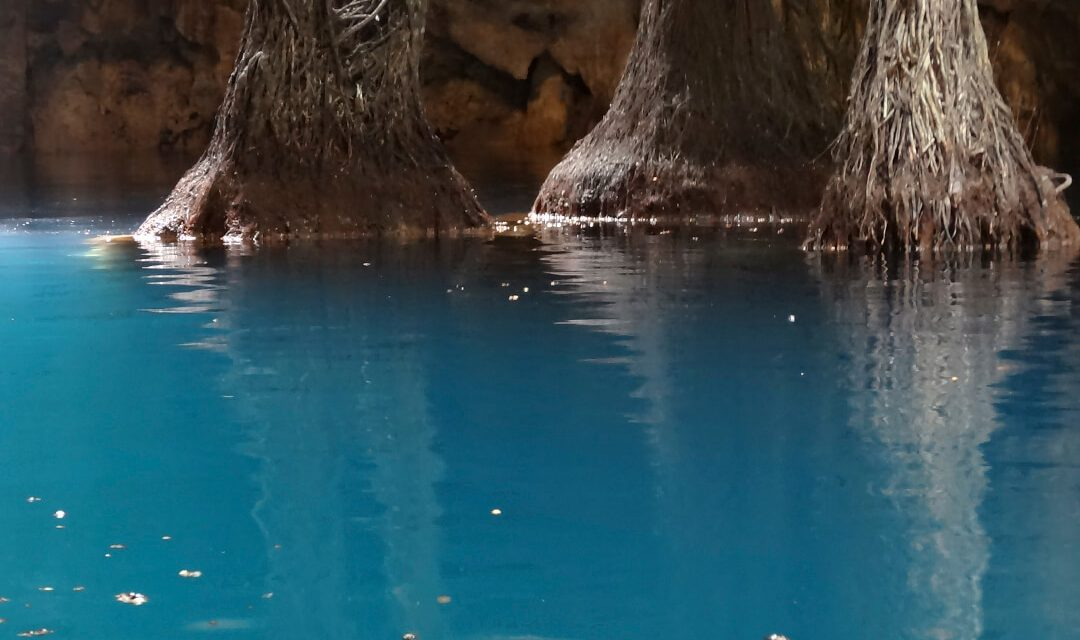 How are cenotes formed?