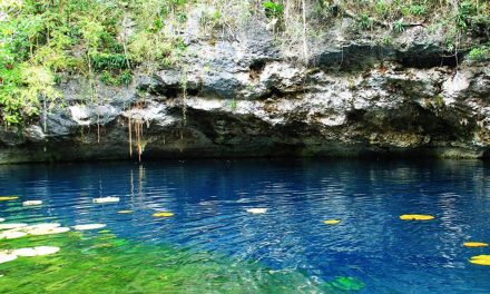 Discovering the corners of Cenote Há