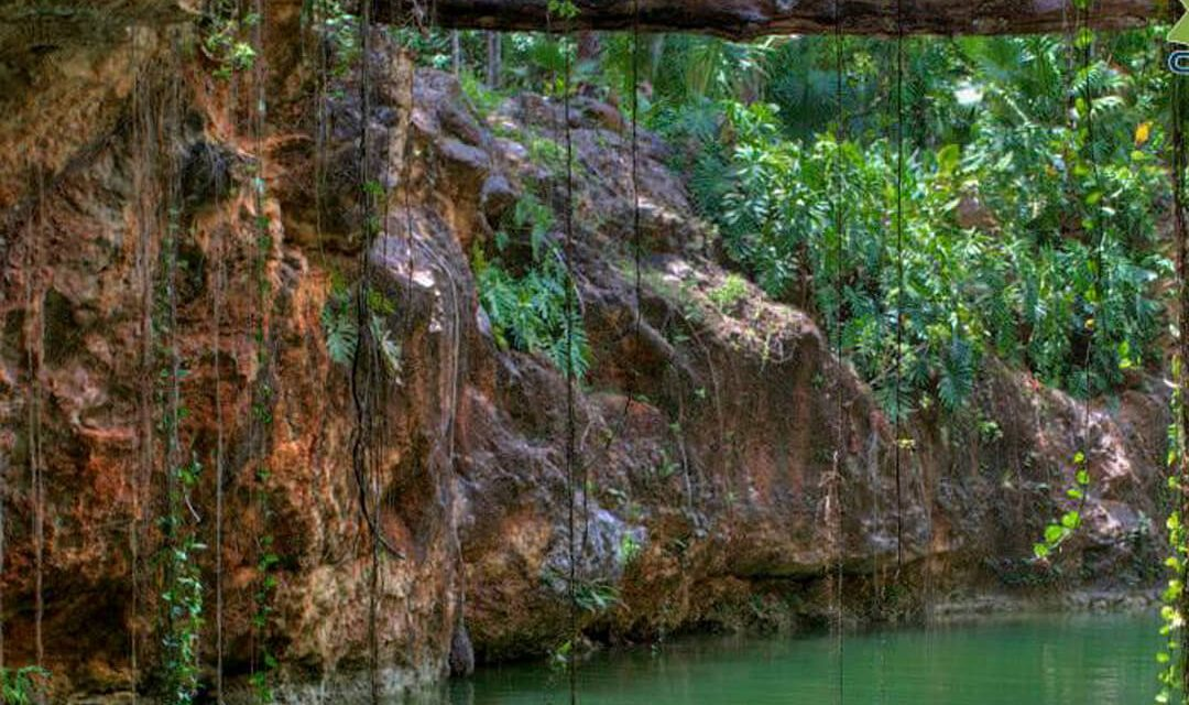 Discover the nature of Cenote K'áak'