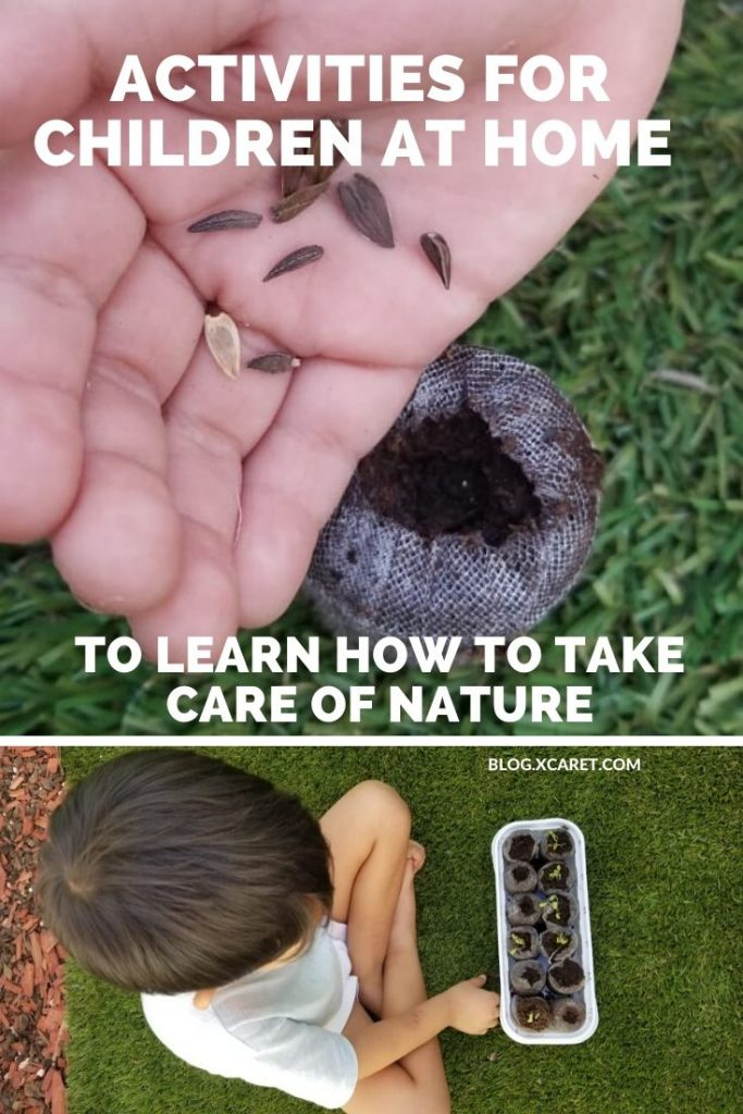 5 Activities and games to learn to take care of nature as a family from home