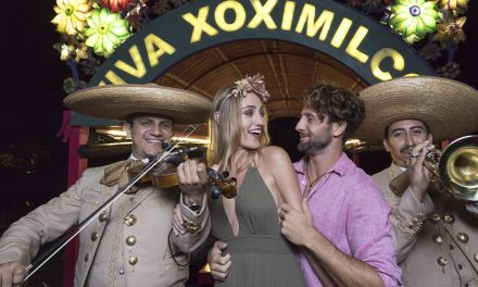 Top 6 Places To Party In Riviera Maya