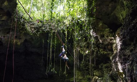 Everything you need to visit a cenote