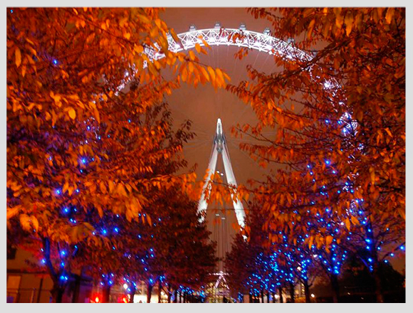london-eye-in-autumn