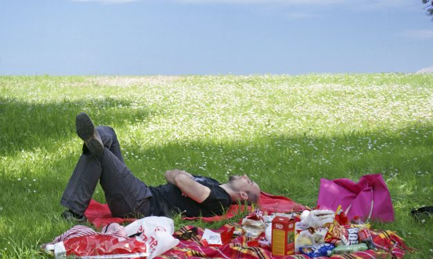 6 Elements Every Summer Picnic Must Have