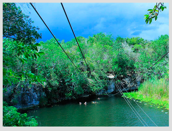 zip-lines-in-the-jungle