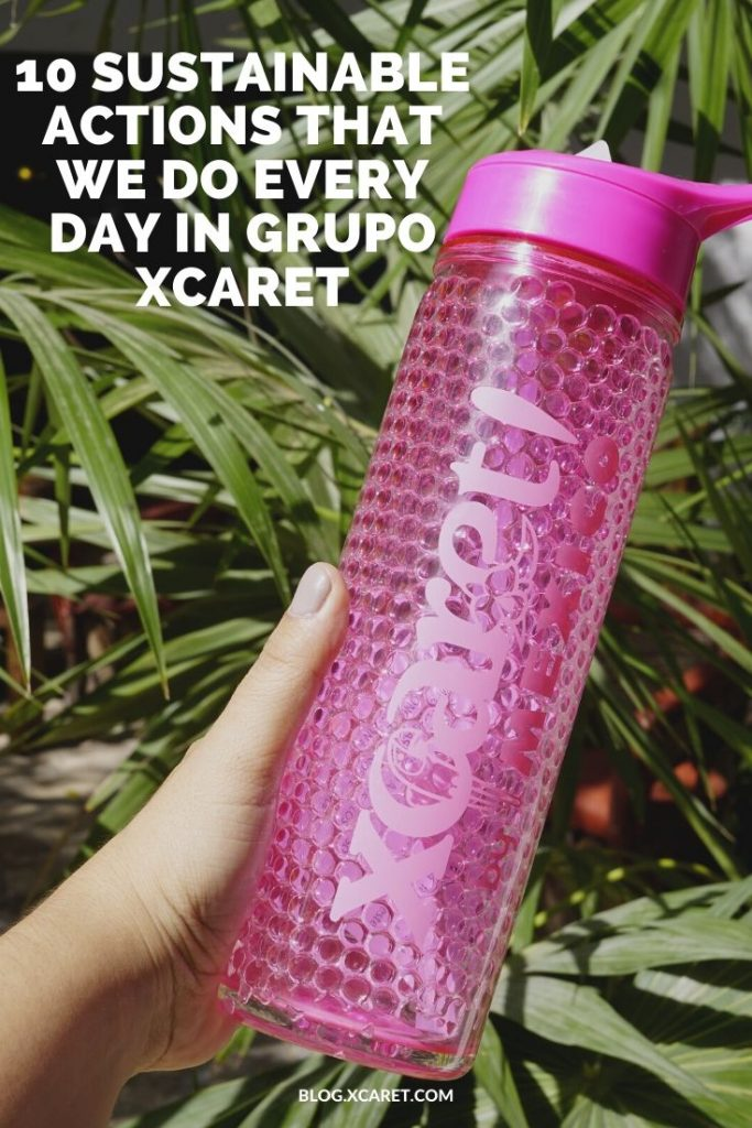 10 sustainable actions that we do every day in Grupo Xcaret