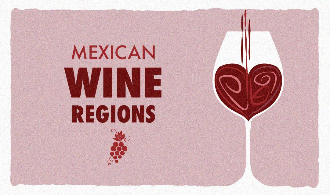 7 Mexican wine regions for your next gastronomic travel experience