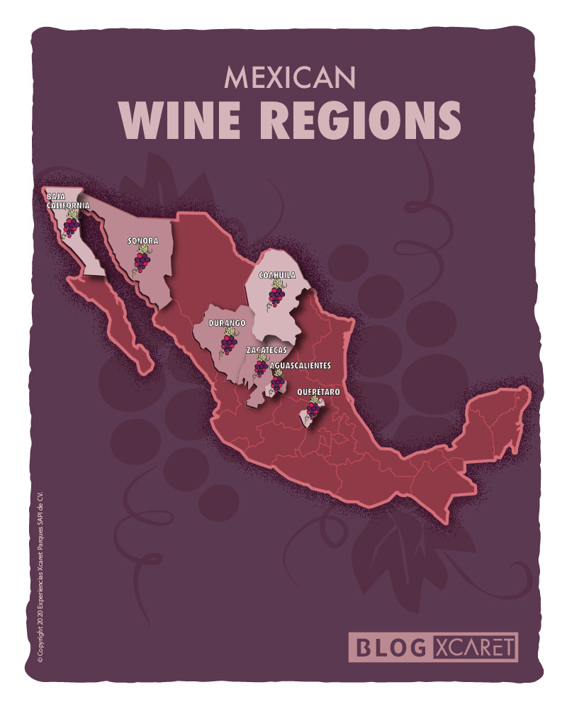 Mexican wine regions