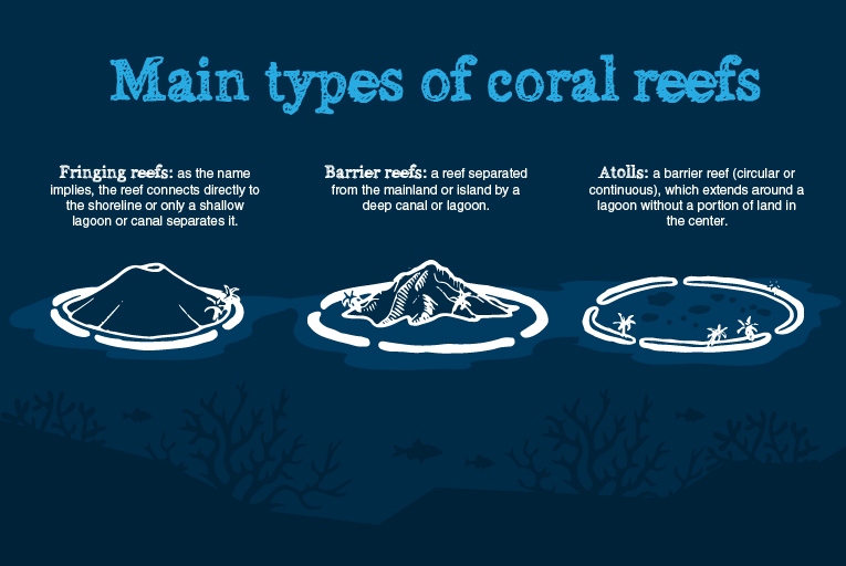 coral-reefs-main-types