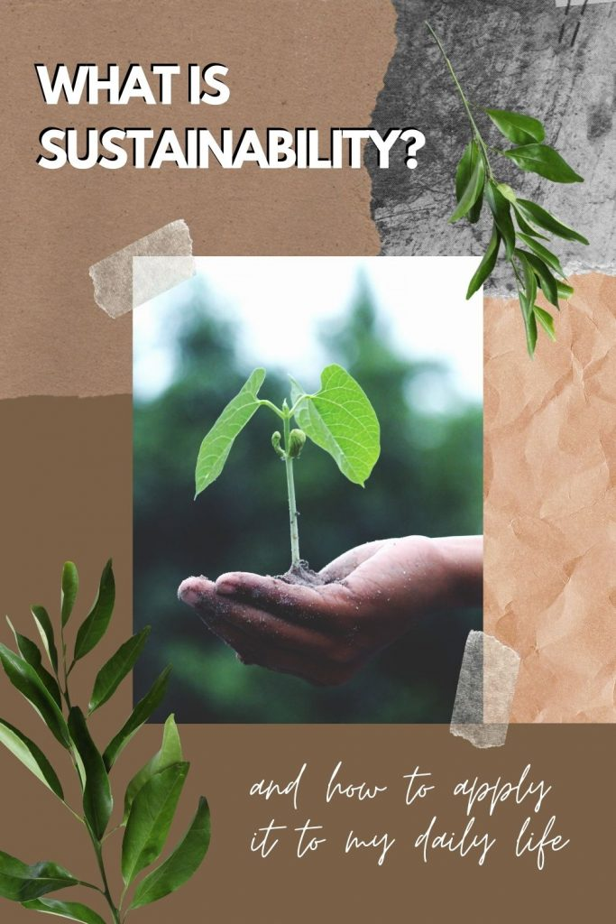 what is sustainability - blog