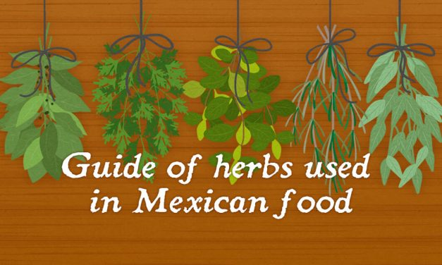 Guide of herbs used in Mexican food