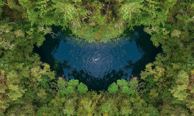 The top 15 most popular cenotes to visit while traveling in Mexico
