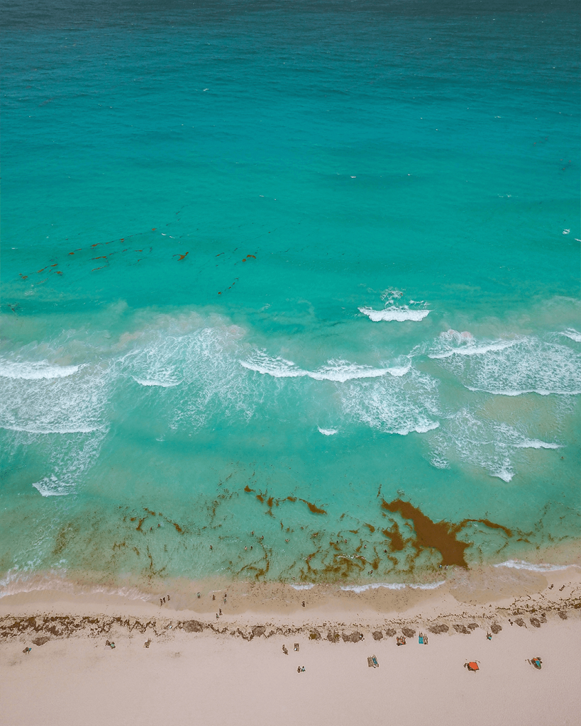 How is the weather in Cancun and Riviera Maya sargassum