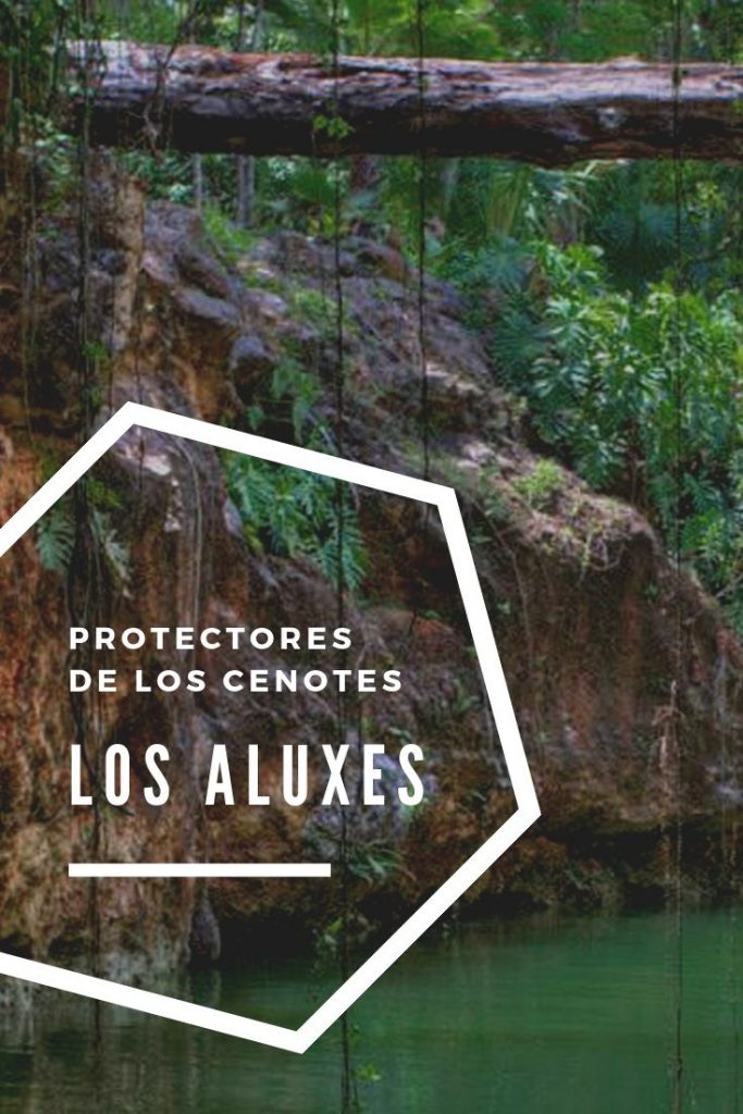 aluxes-footer