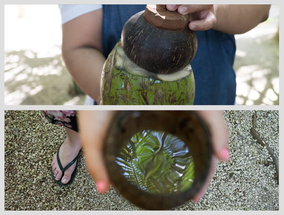 5 Things you will learn at the Coconut workshop in Xcaret